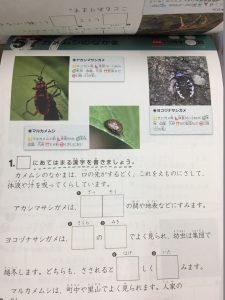 図鑑漢字ドリル小学1~6年生 危険生物