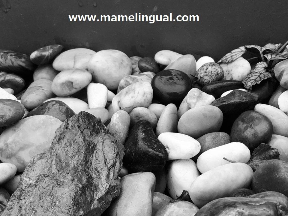https://www.mamelingual.com
